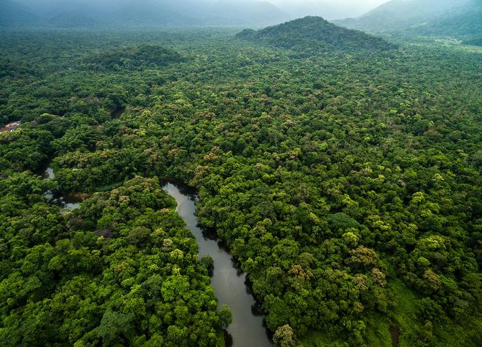 Surinamfloden