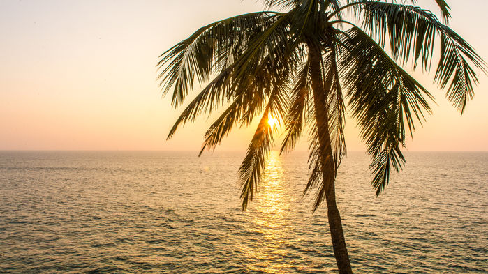 solnedgång vid kusten