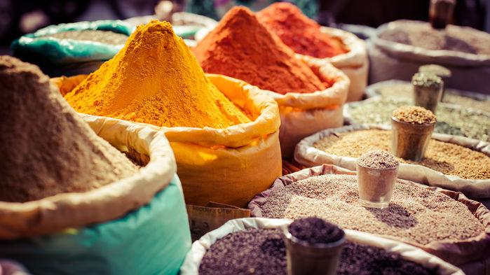 kryddbodar Jaipur