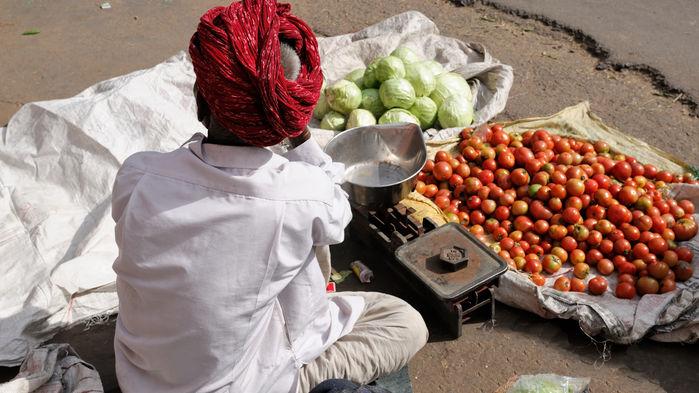 grönsaksförsäljare Jaipur