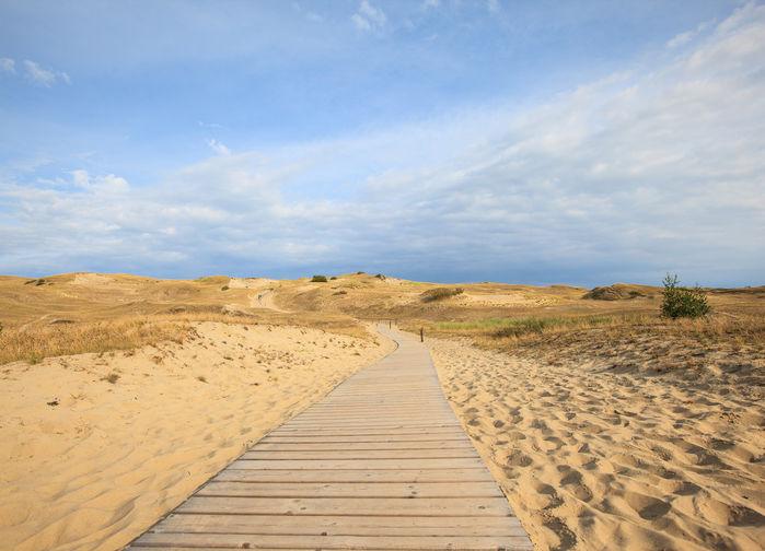 Sanddyner så långt ögat kan nå ute på Kuriska näset