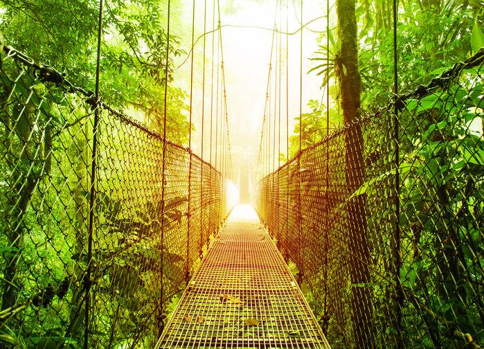 hängande broar