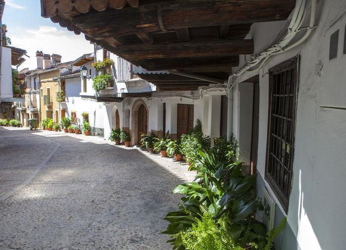 Gata i Guadalupe